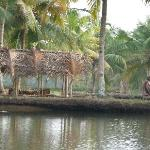 In the backwaters