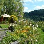 Blick vom Garten ins Liesertal