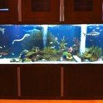 super aquarium a l'entrée du restaurant