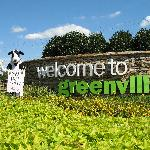 Welcome to Greenville!