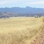 San Rafael grasslands, 8 mi from STI