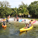 Kayaks or Paddleboard for a fun paddle in the Harbor of Coconut Grove