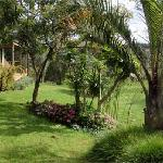 Cottages nestled in subtropical gardes