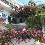 Hotellet set fra gaden med alle blomsterne