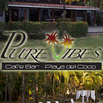 Pure Vibes Cafe
