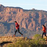 Sunrise Trail Running Tours