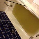 muddy bath water