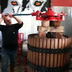 Steve pressing 2011 Zinfandel!