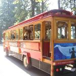 the trolley around the city, worth it