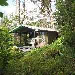 Oceanview Hut
