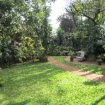 Back gardens - gorgeous with quiet reading nooks and places to pray or meditate