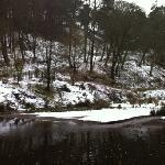 winter at Ogden