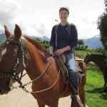 The real thing- Peruvian Paso horse