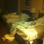 this was our room when we 1st walked in! refused to give us new room. offered sheets 4 us to cha