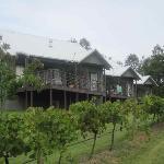 view of vineyard suite