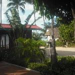 View from the front porch of the garden bungalow