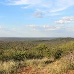 View on game drive