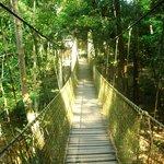 吊橋,是南峇山周边景观的一大亮点.