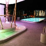 Pool Roof