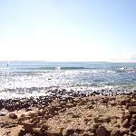 Burleigh Point