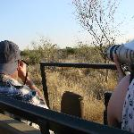 foto hunting in the logde animal resort
