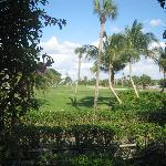 View of golf course from the Inn property.