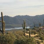 View of part of Saguaro Lake