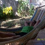 Love the hammock!