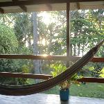 view and hammock in front of the room