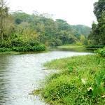 som epart of the river were it is bit deep