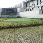 Small Golf Course in a private hotel yard