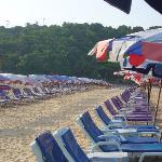 Rows of beach benches at Nai Harn.
