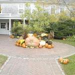 Beautiful Fall Display at entrance