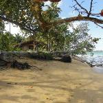 plage vers Las  Terranas