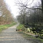 Walk To Thuscross Reservoir