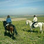 Andalusian countryside ride