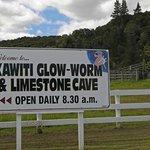 Kawiti Caves Photo