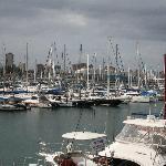 Yachts near Cafe Fish