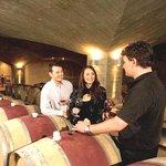 Výlety za vínem aochutnávky vín