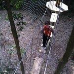 Photo de Forest Adventure Ohira