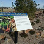 The new rock garden ...