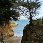 Lady's Beach, Kawau Island