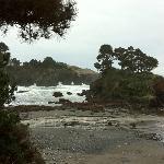Buckhorn Cove