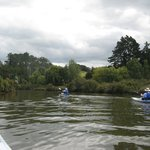 Puhoi River Canoe Hire Ltd Kayak Trips Photo