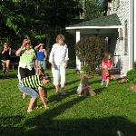 Weekly Egg Hunt for Children