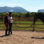 Natural Horsemanship Lesson
