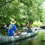 Relax and enjoy your paddle on the Little Manatee River.