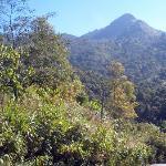 View to the south of the mountain, Doi Phukha, I think
