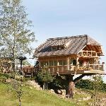 Sauna im Baumhaus