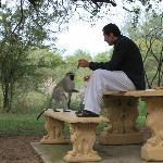encuentro con un mico
